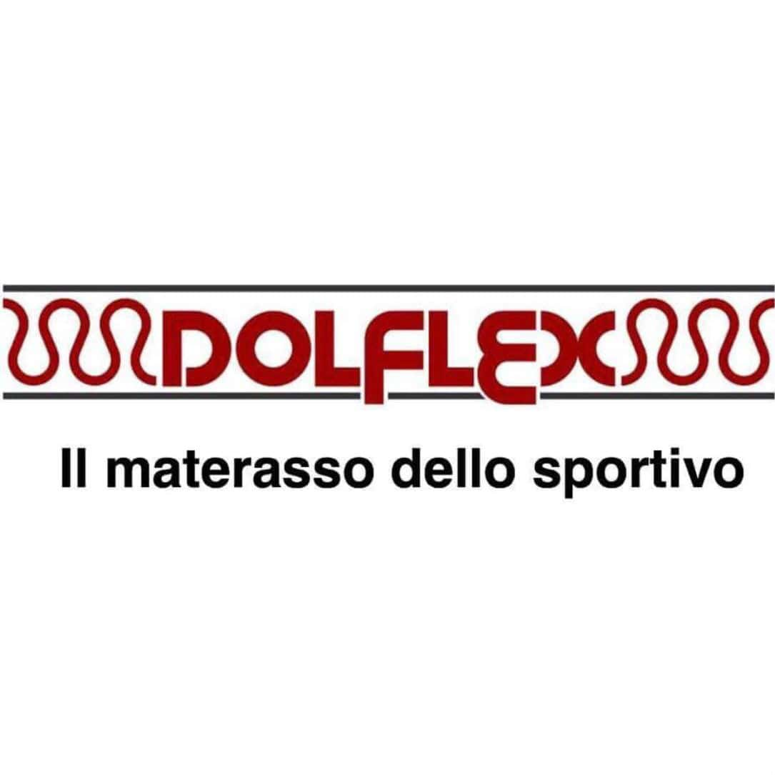 dolflex logo